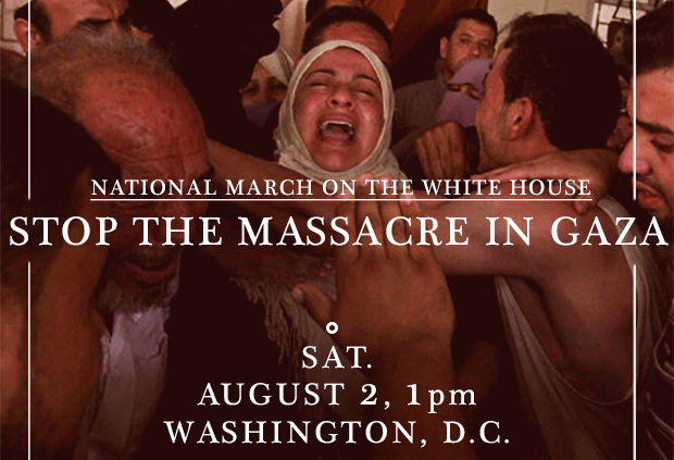 Photo of Aug. 2 National March in D.C. — Stop the Massacre in Gaza!