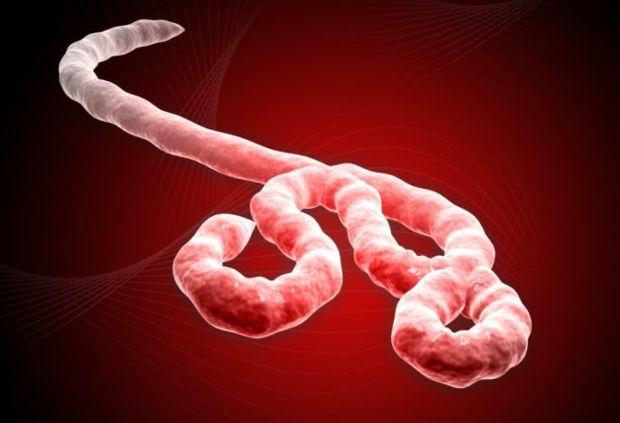 Photo of The Ebola crisis and capitalism