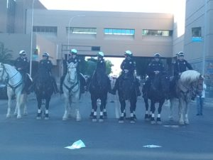horse-police-1-1