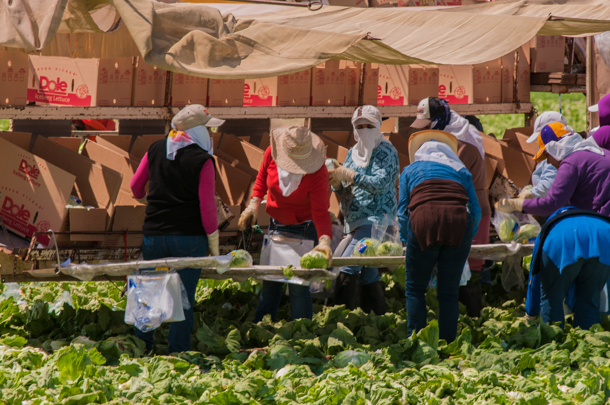 Photo of Working-class women, actresses unite in #MeToo solidarity