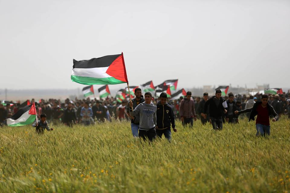 Palestinians injured at Gaza borders