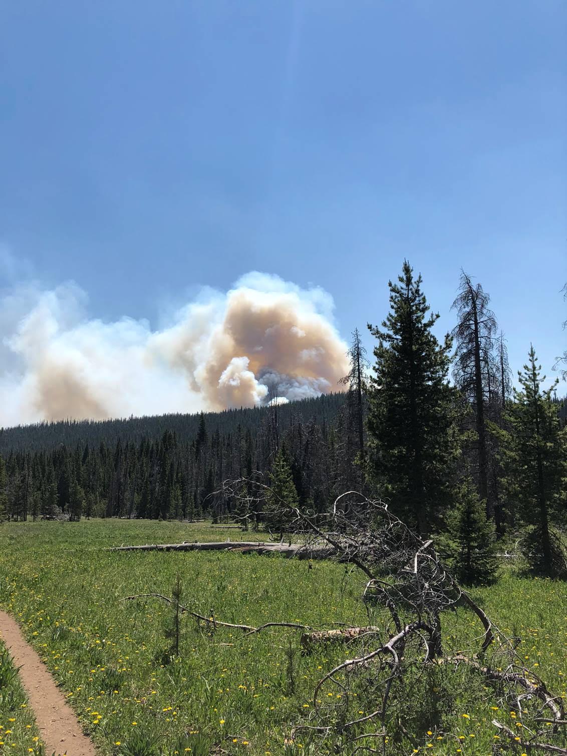 Photo of El manejo de las tierras con fines de lucro alimenta los incendios forestales de Colorado