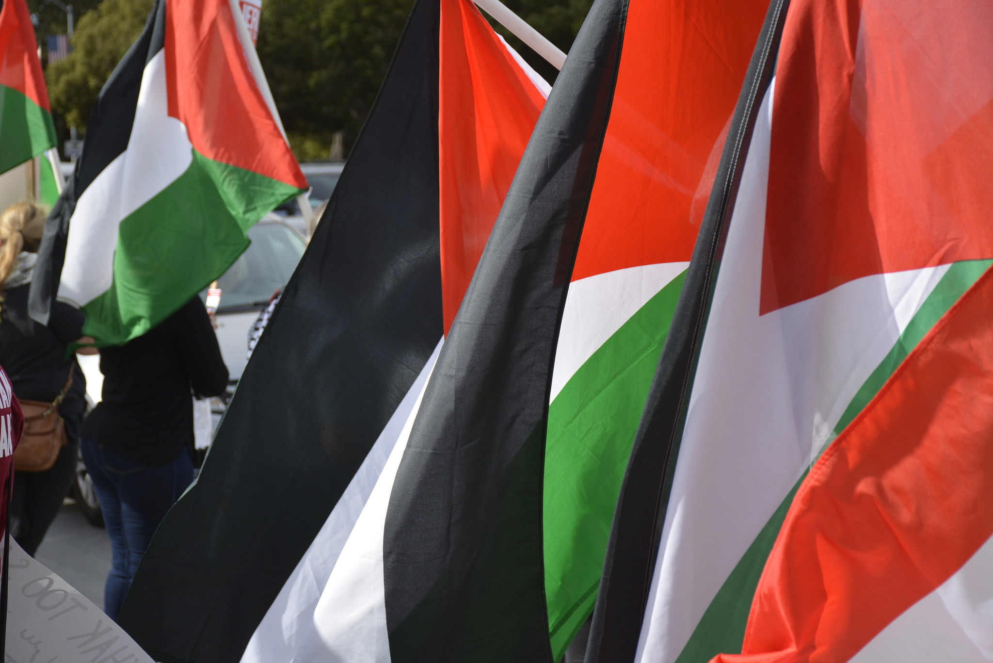 Photo of PSL statement: Solidarity with the Palestinian people