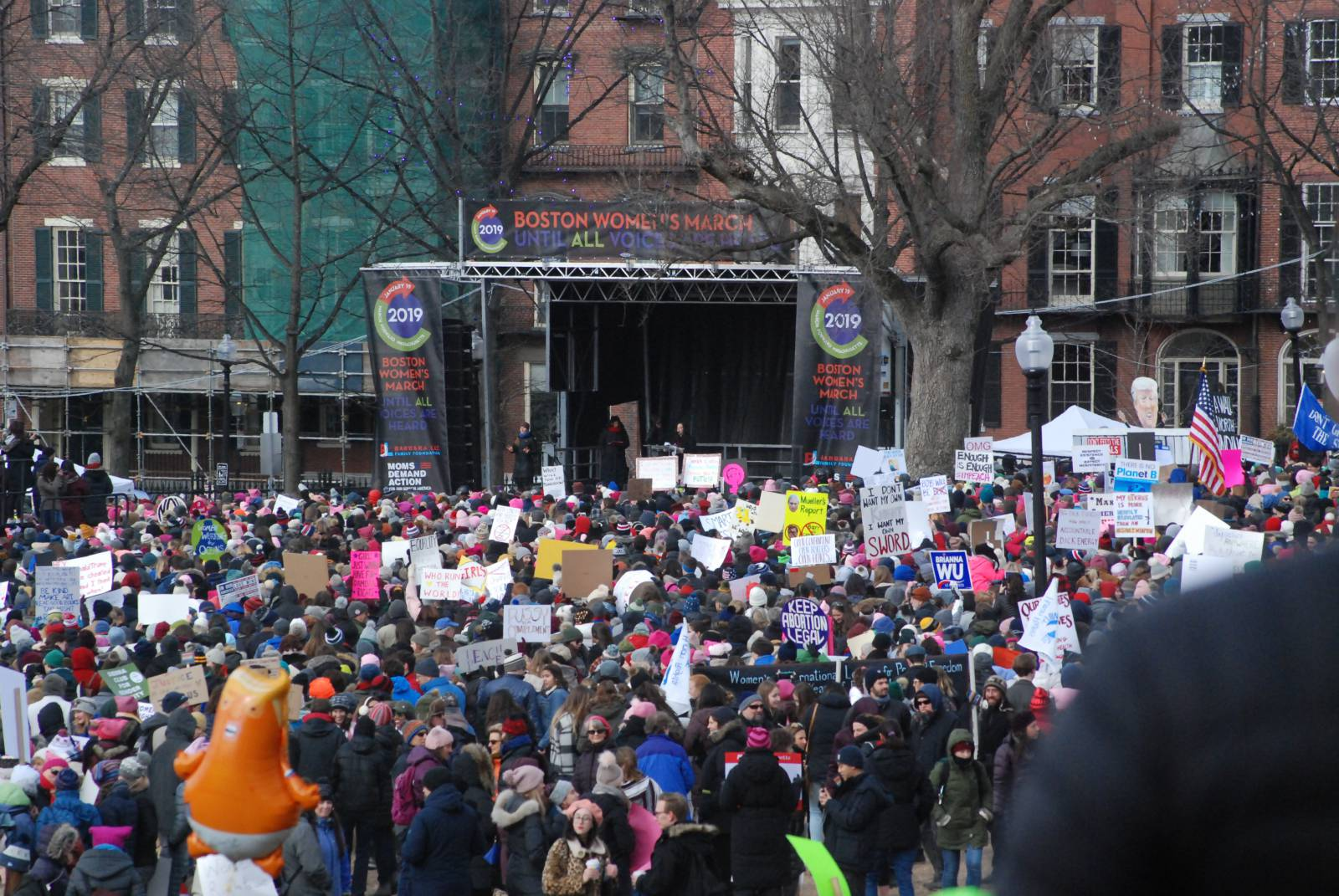 Photo of Optimism warms protesters at Women's Marches across New England