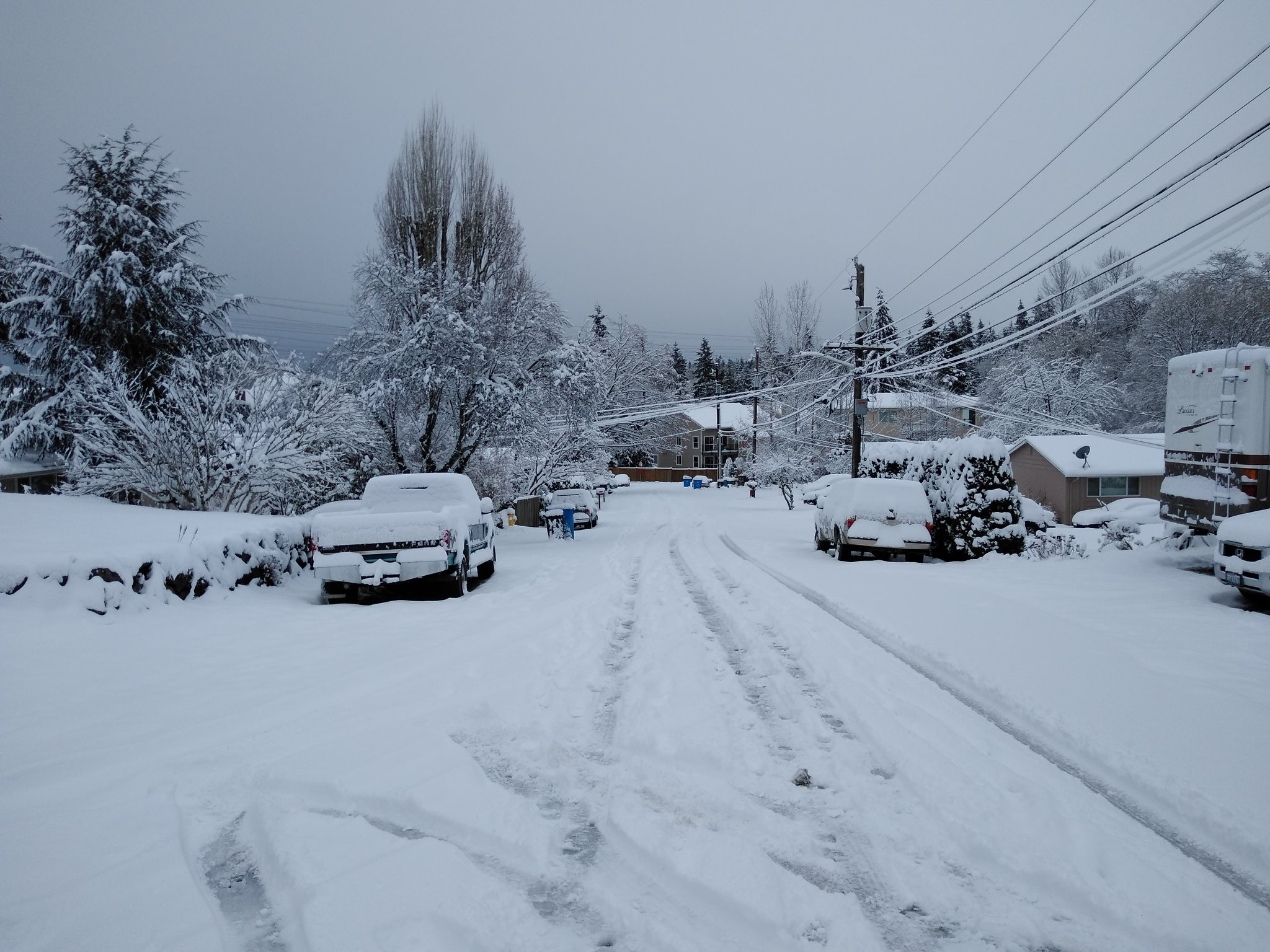 Photo of Socialism and snow: a program for the Puget Sound