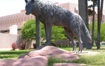 By Juan Fidel Larrañaga for the University of New Mexico