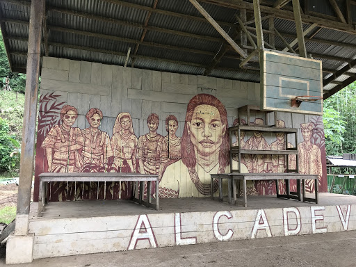 The Lumad high school in Lianga is an ALCADEV school (Alternative Learning Center for Agricultural and Livelihood Development). -Liberation News Photo