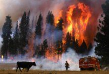 Photo of La Riva/Freeman Statement on CA Fires: Capitalism fuels climate catastrophe